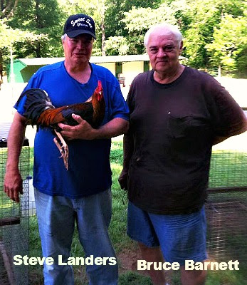 Steve Landers-Bruce.jpg