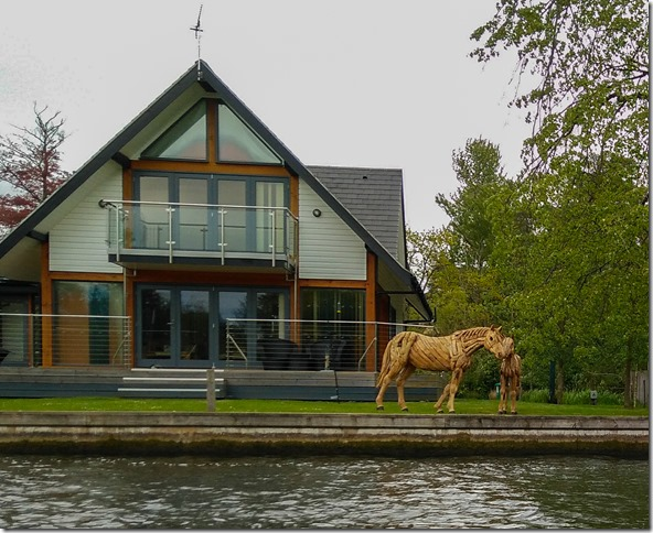 horning horse (1 of 1)