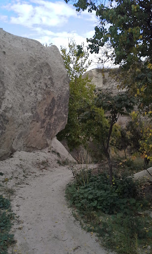 Pigeon Valley trail