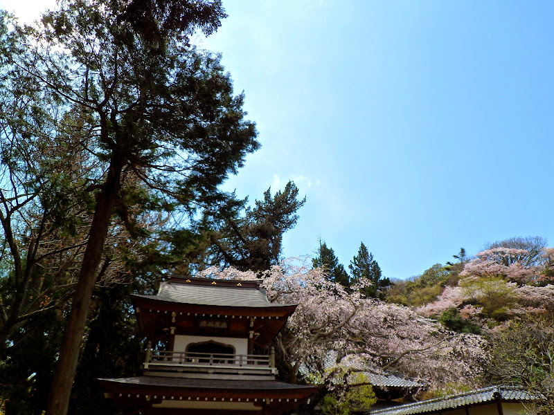 2014 Japan - Dag 7 - tom-SAM_0430-0004.JPG