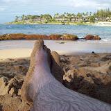 Hawaii Day 7 - 100_7955.JPG