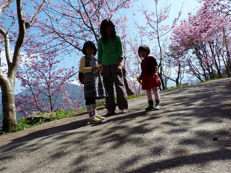 TAIWAN Chia yi, Taichung et quelque part ? au  au sud de Taipei - P1000345.JPG