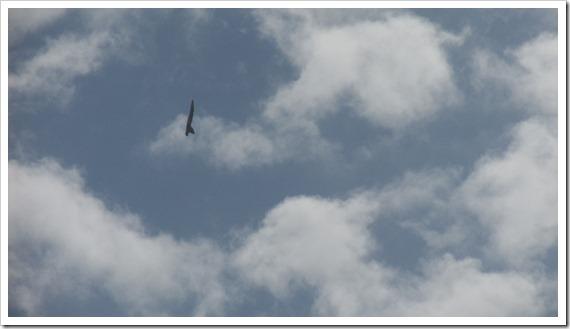 F-18 (3)