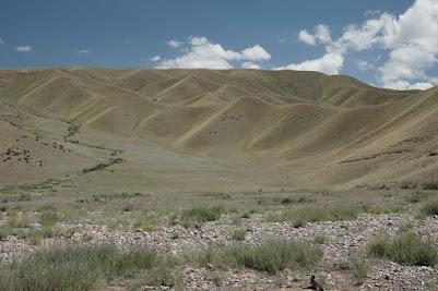 Wellige, grüne Hügel im Kara Keche Tal