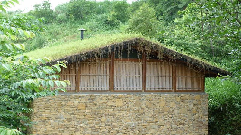 TAIWAN A cote de Luoding, Yilan county - P1130591.JPG