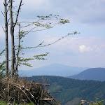 Volovec Skalisko (5) (800x600).jpg