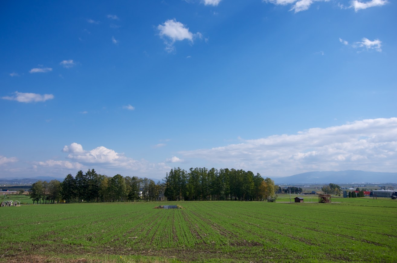 青い空、緑の大地