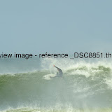 _DSC8851.thumb.jpg