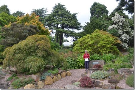 14 me in rock garden