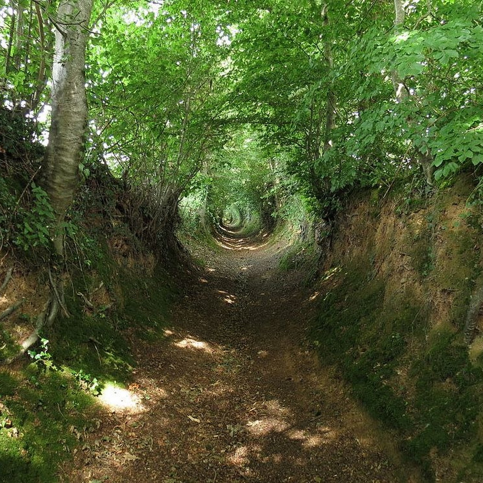 The Sunken Lanes of Europe