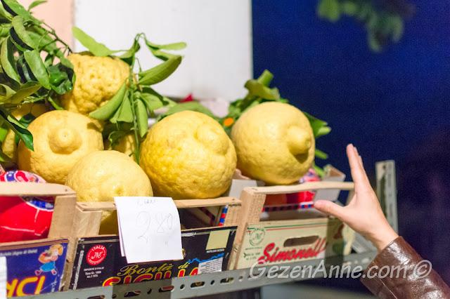 Güney İtalya'daki kocaman limonlar