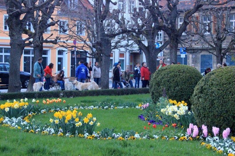12. April 2016: On Tour in Bayreuth - Bayreuth%2B%252840%2529.jpg