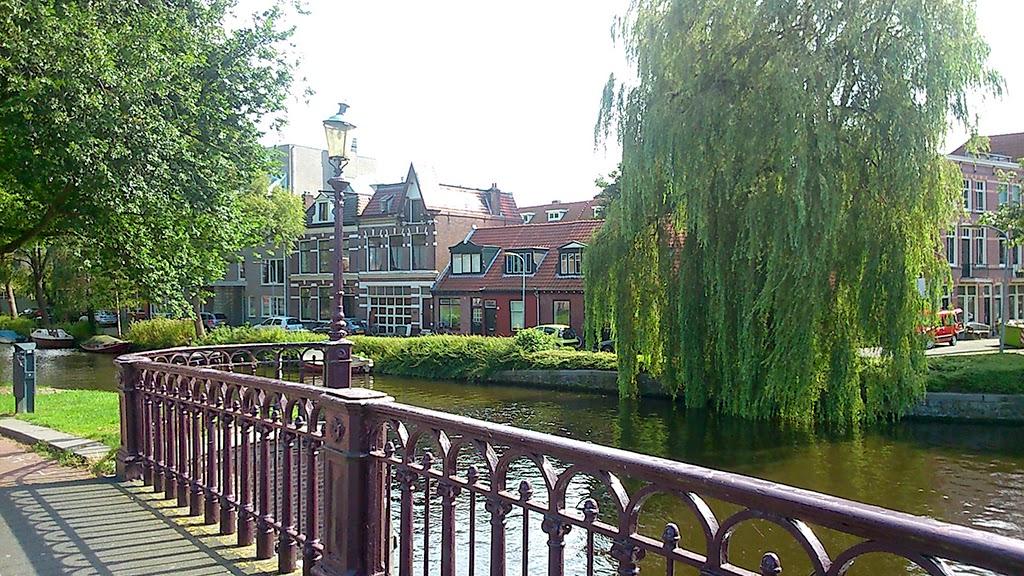Haarlem 30 augustus 2014 - DSC_0775.JPG