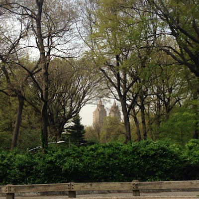 View of the West Side from an East Side Central Park Bench in New York City, near the Metropolitan Museum
