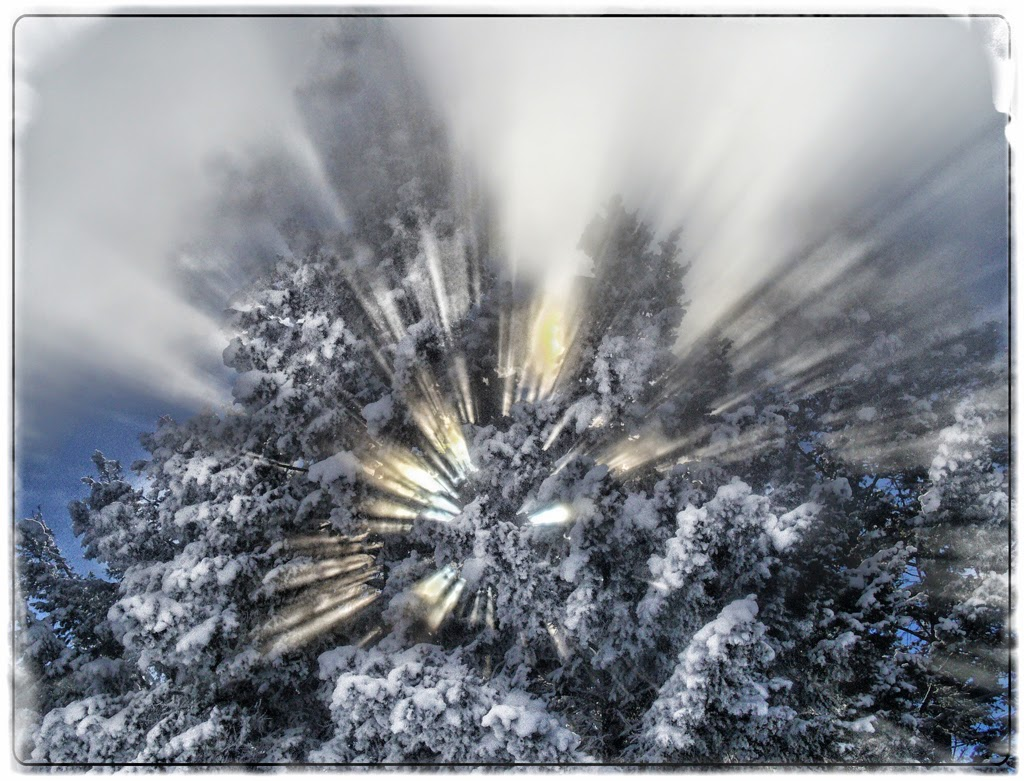 """""""Snowy Rays"""" by Celene Wendt -- 1st place A Special"""