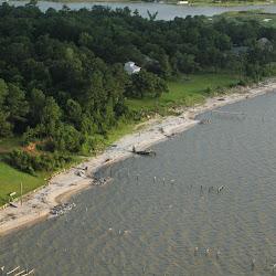 NEP Shoreline June 23, 2013 004