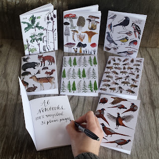 Illustrated notebooks by Alice Draws The Line