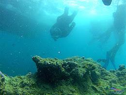 pulau harapan, 6-7 juni 2015 gopro 018