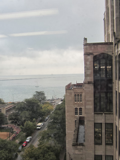 2013-10 Chicago Meeting - IMG_0733.JPG