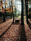 Podzimní idyla
