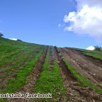 Monte Pelpi Bedonia 12 maggio 2013 (6).JPG
