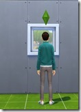 module-picture window