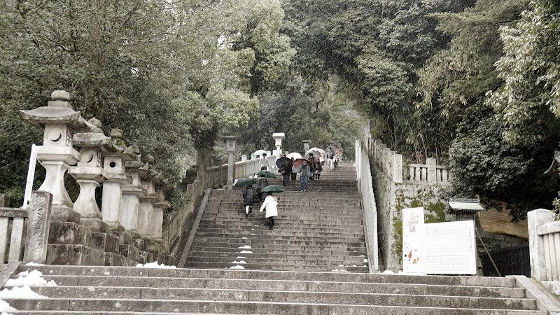 金比羅参り 写真8