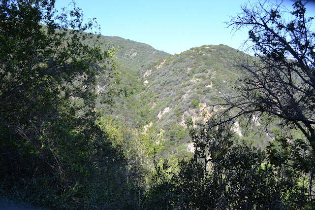 steep canyon nearby