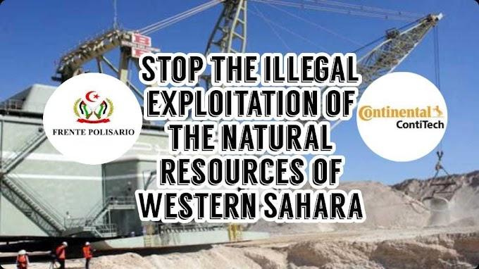 Continental AG podría dejar de suministrar material de mantenimiento para la cinta transportadora del fosfato en el Sáhara Occidental