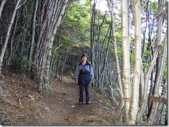 Ushuaia_Parque-Nacional-Terra-do-Fogo-trilhas