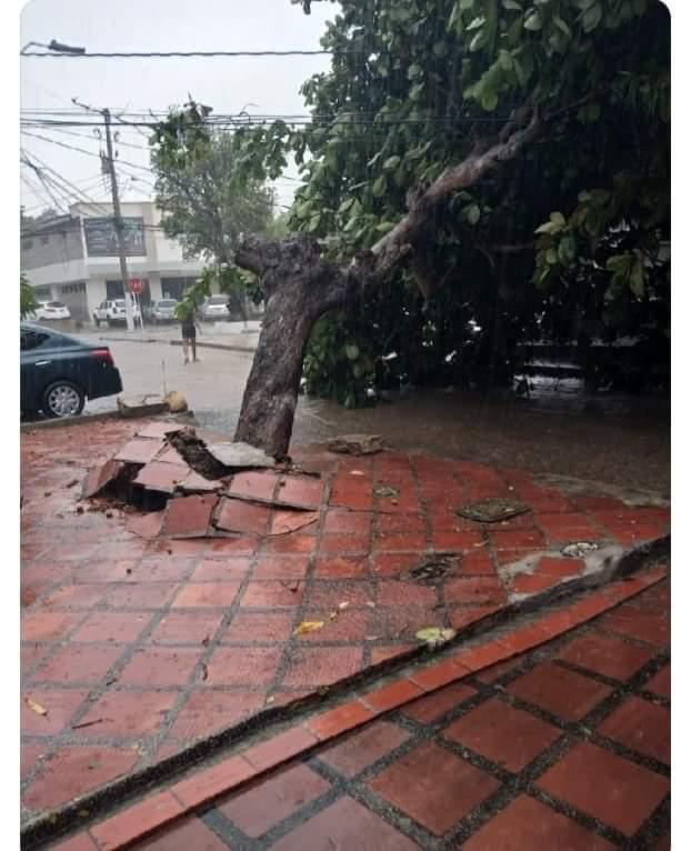 Vendaval azotó varias viviendas en barrio El Carmen y Pumarejo en Barranquilla