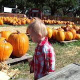 Pumpkin Patch - 114_6544.JPG