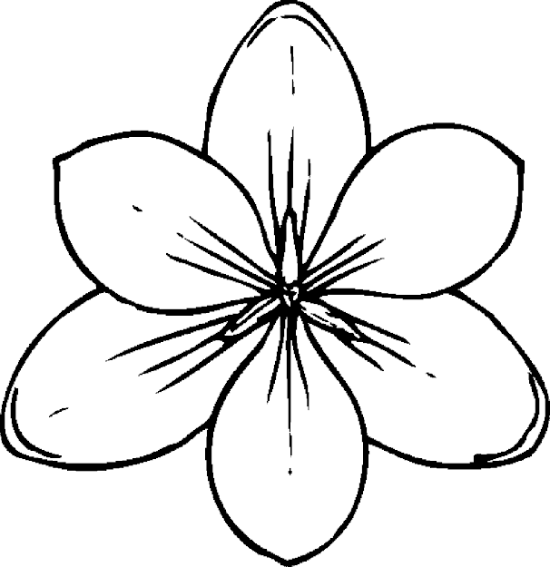 Coloring Pages Flower Mandala Coloring Pages Printable Kids Colouring Pages  Free Flower Coloring
