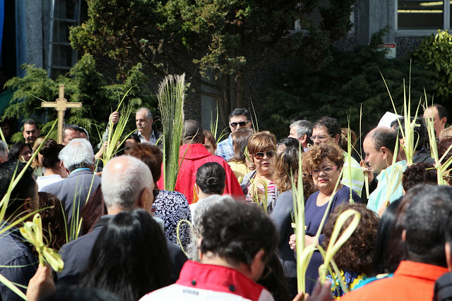 Palm Sunday - IMG_8694.JPG