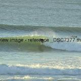 _DSC7377.thumb.jpg