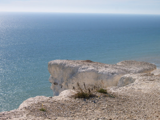 Exposed Chalk on Cliff Edge