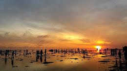 pulau pari 050516 bolangers 19