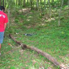 Taborjenje, Lahinja 2006 1.del - IMG_4706.JPG