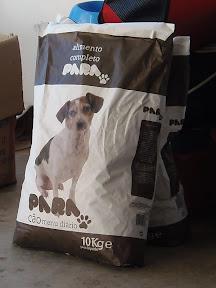 Thank you - Dogwalk Donations