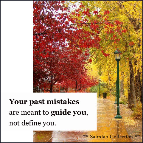 Your past mistakes are meant to guide you