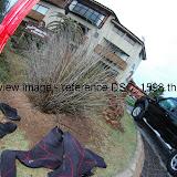 DSC_1598.thumb.jpg
