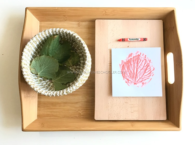 Autumn Themed Activity: Leaf Prints