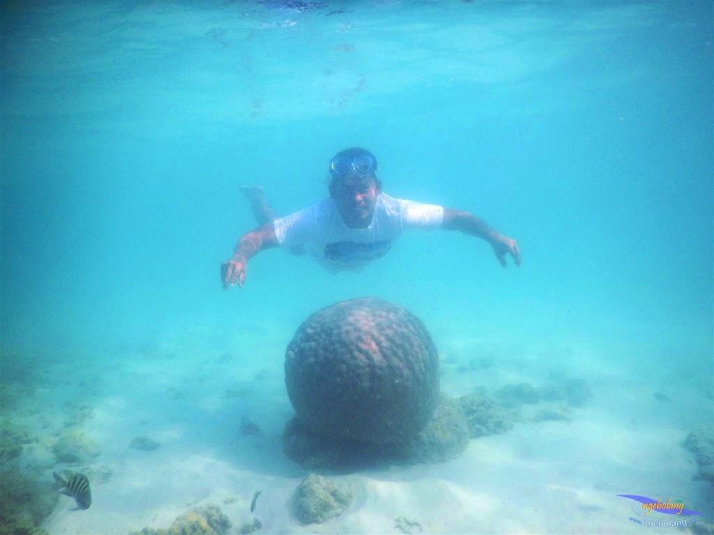 pulau pari, 23-24 mei 2015 45