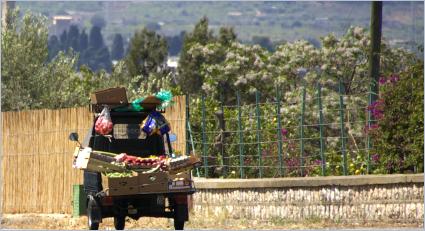 Sizilien - Ape mit Obst und Gemüse auf der Fahrt zum Markt