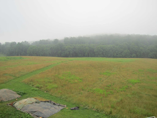 June 17--view towards OR333-South (bright green area in center background)--next site to be excavated in July.  Chicken Mountain is in the background.