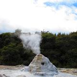 Rotorua_Geyser