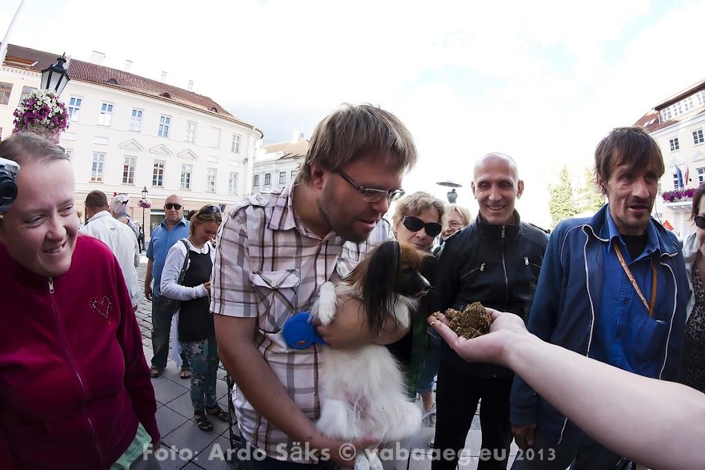 2013.07.19 Lõhnavad Tartu Hansapäevad - AS20130719THP_034S.jpg