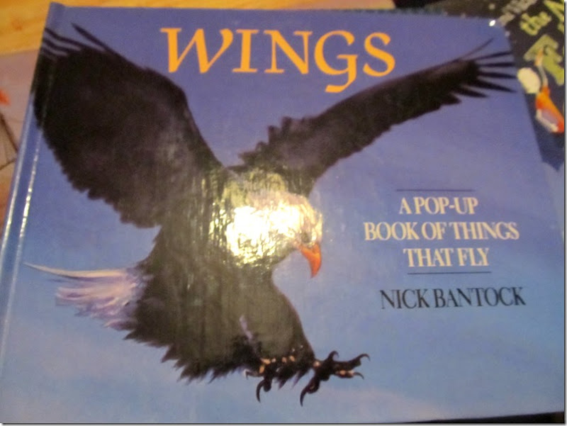 Wings: A Pop-Up Book of things that fly