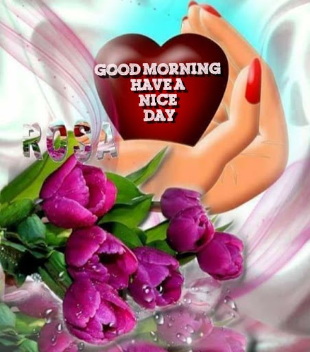 Good Morning And Have A Nice Day Collection Of Sms Text