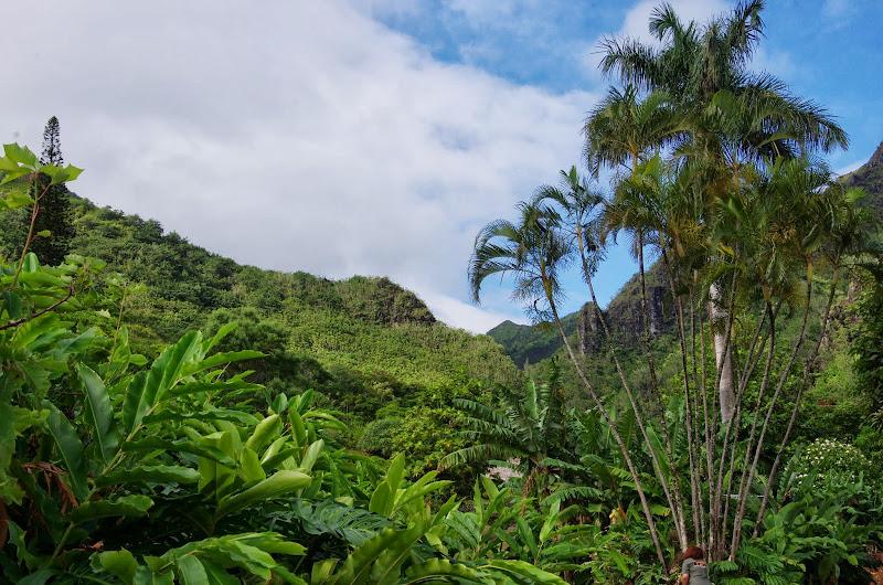 06-26-13 National Tropical Botantial Gardens - IMGP9466.JPG
